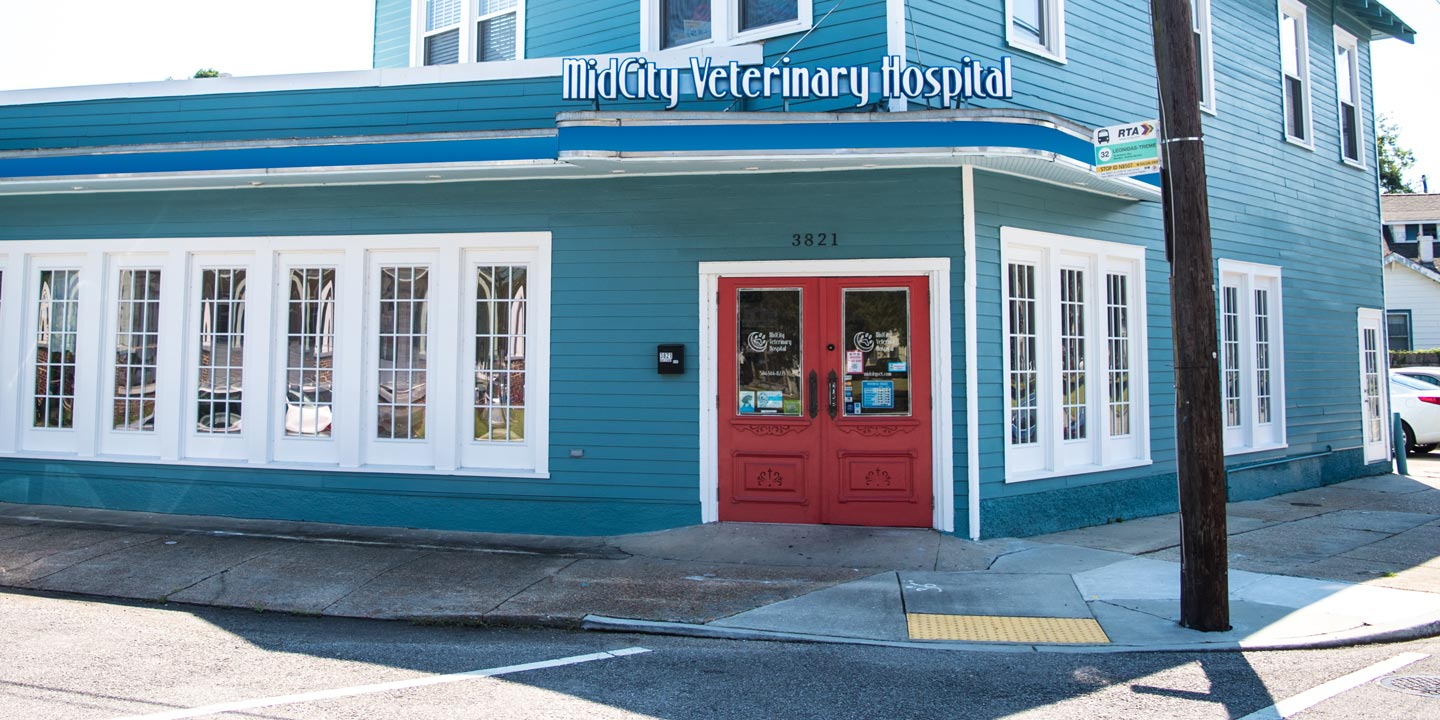 MidCity Veterinary Hospital Building